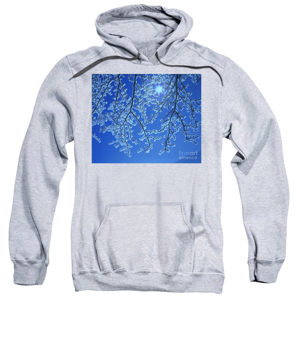 Hoar Frost Sweatshirt featuring the photograph Hoar Frost by Hermann Eisenbeiss and Photo Researchers