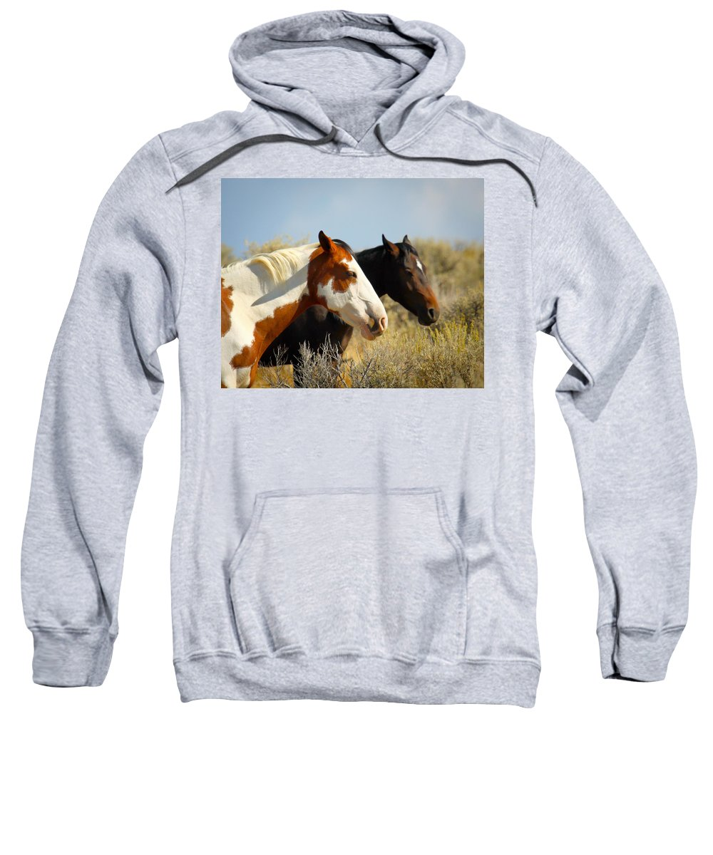 Horse Sweatshirt featuring the photograph Horses In The Wild by Steve McKinzie