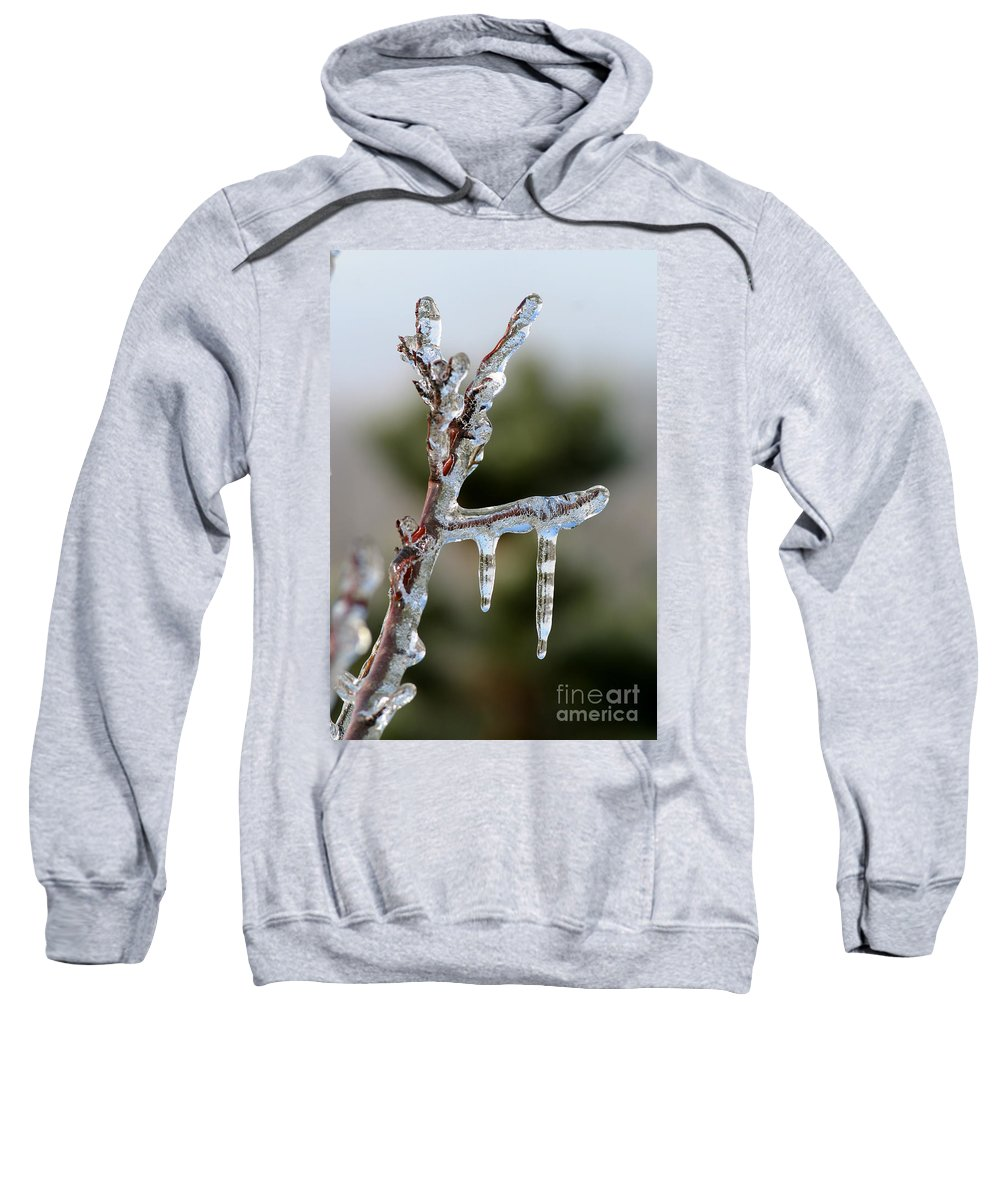 Ice Sweatshirt featuring the photograph Icy Branch-7529 by Gary Gingrich Galleries