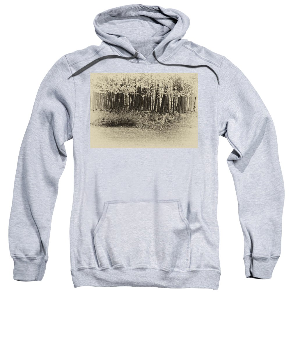 West Virginia Sweatshirt featuring the photograph In A Yellow Wood Antique by Steve Harrington