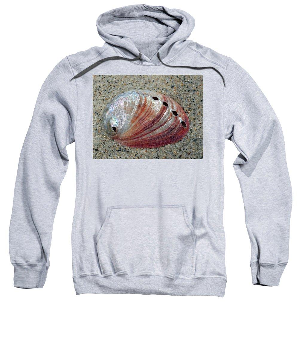 Shell Sweatshirt featuring the photograph Iridescent Treasure Macro by Sandi OReilly