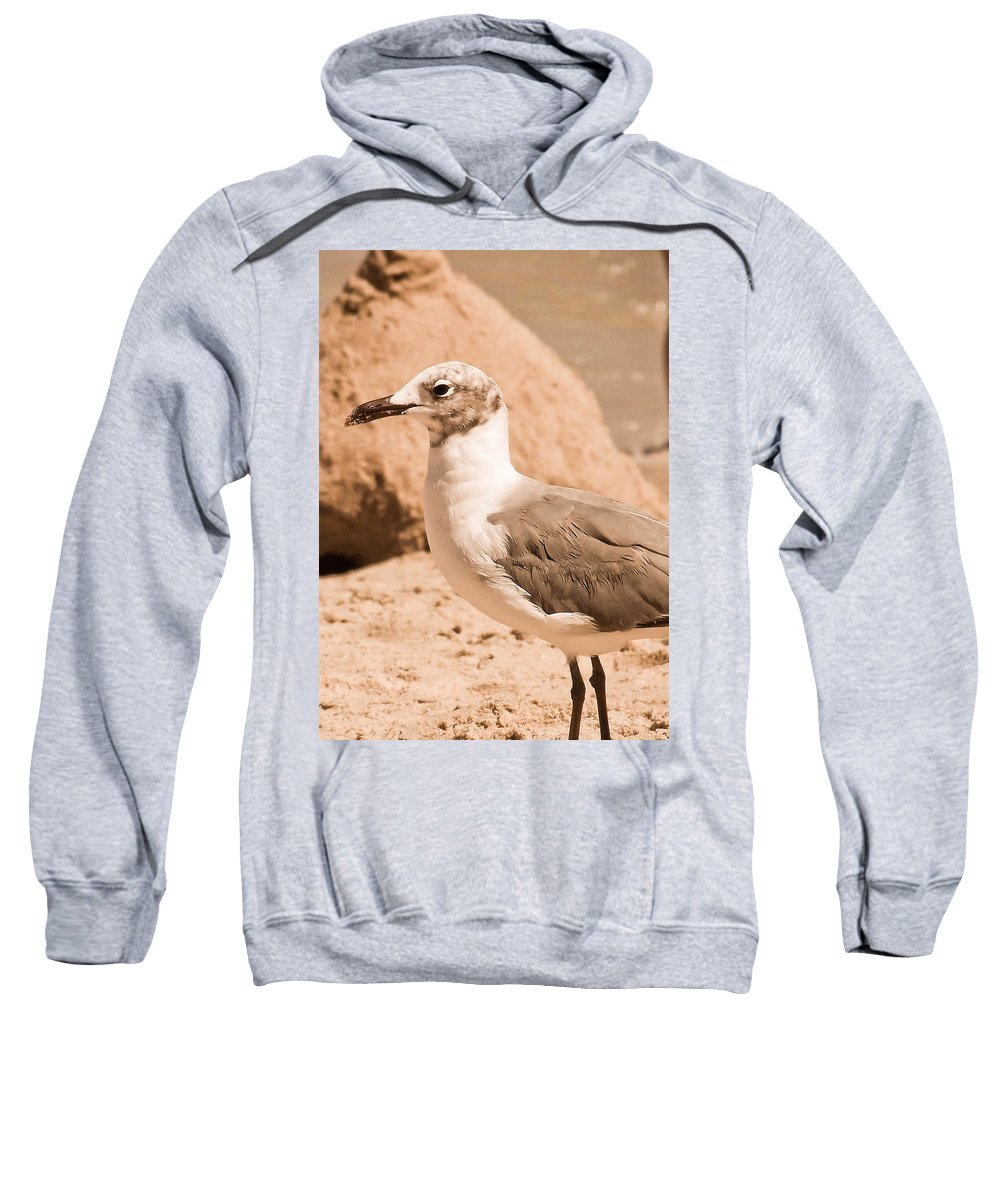 Seagull Sweatshirt featuring the photograph Jagr by Trish Tritz