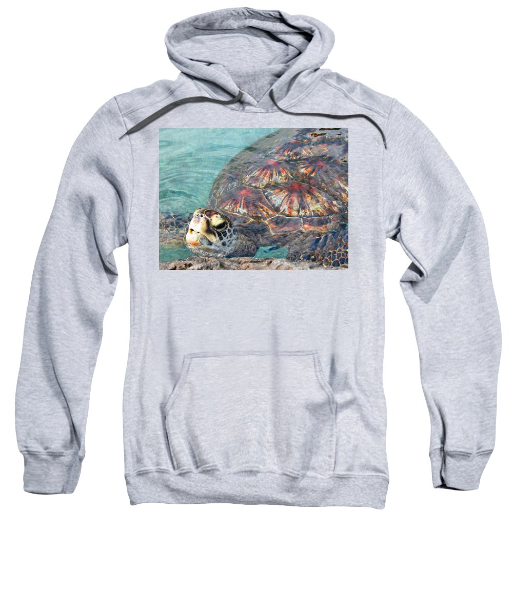 Turtles Sweatshirt featuring the photograph Just Saying Hello by Lynn Bauer