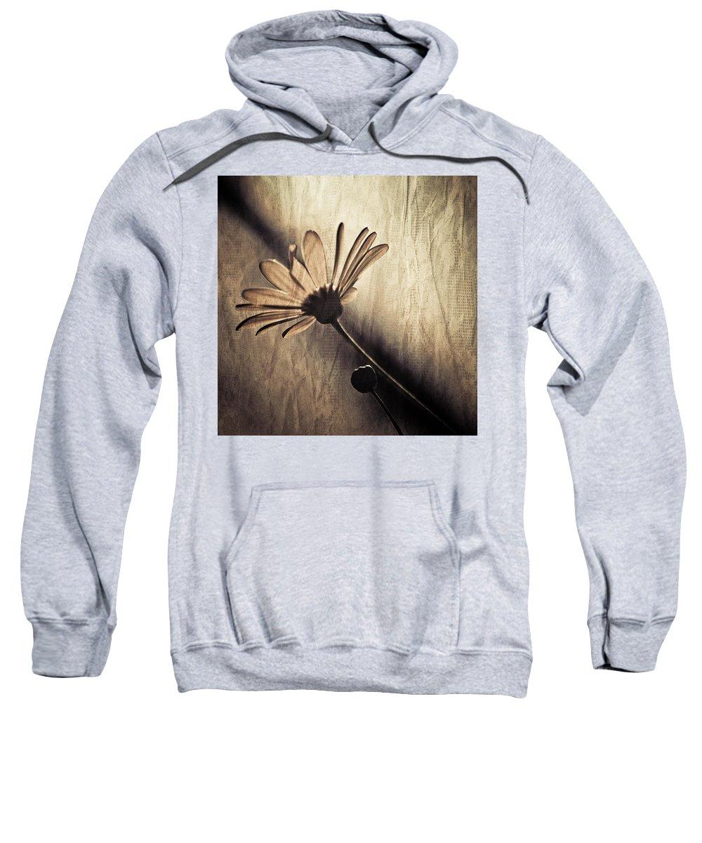 Kardashian Sweatshirt featuring the photograph Kardashian by Trish Tritz