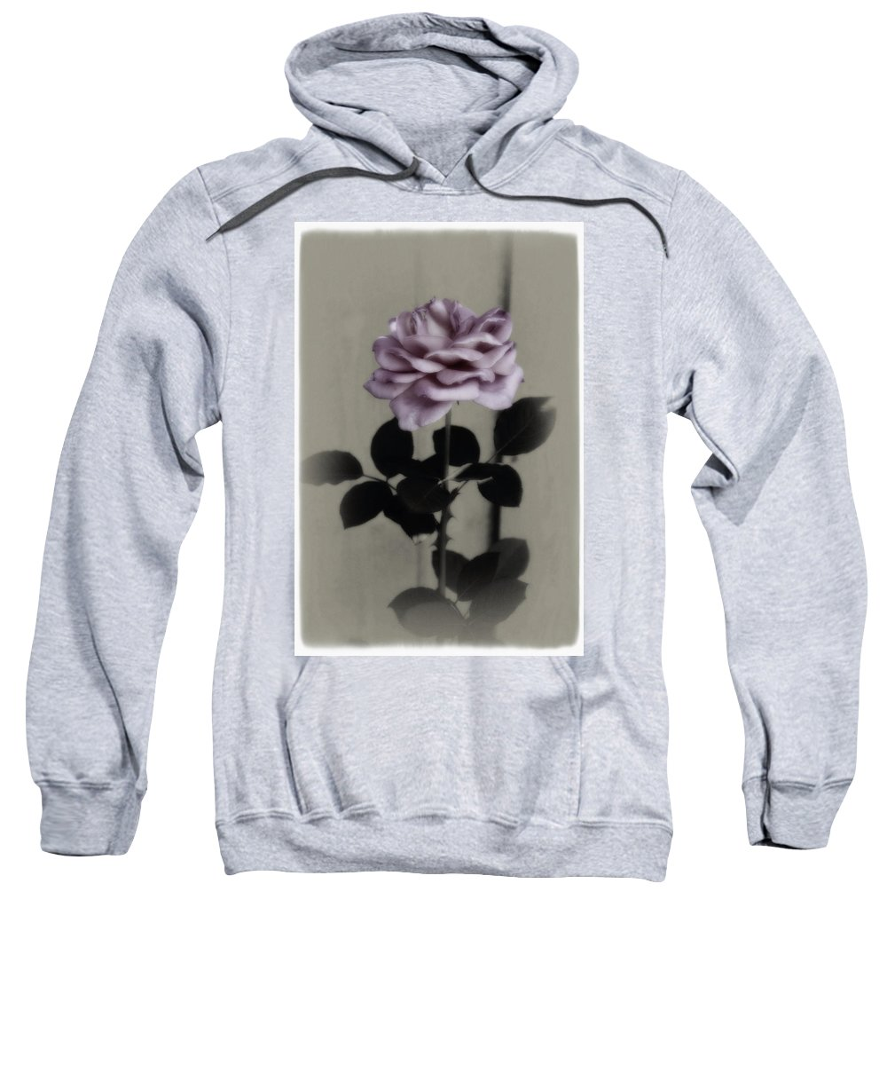 Digitally Hand Colored Sweatshirt featuring the photograph Kathleen's Garden Rose by Linda Dunn