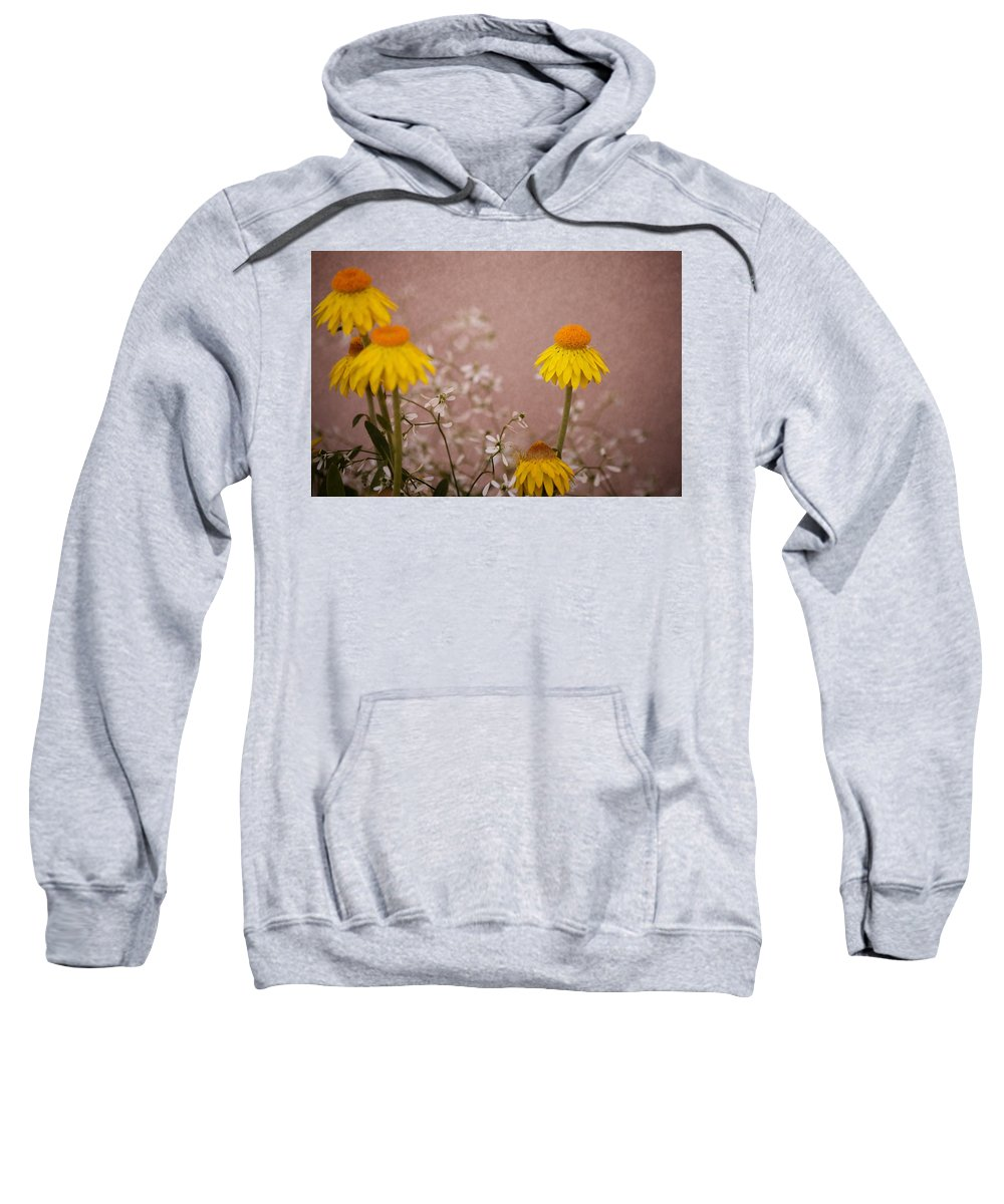 Flower Sweatshirt featuring the photograph Katy Perry by Trish Tritz