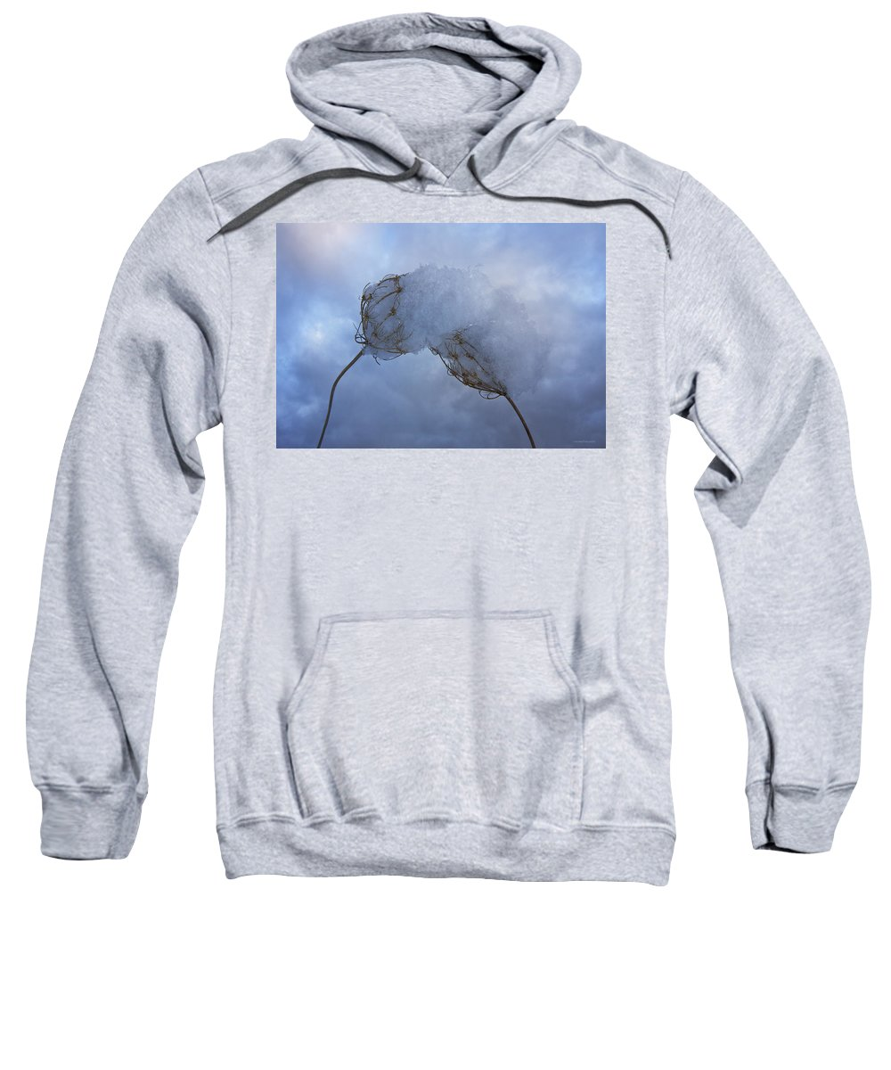 Winter Sweatshirt featuring the photograph Lean On Me by Ron Jones