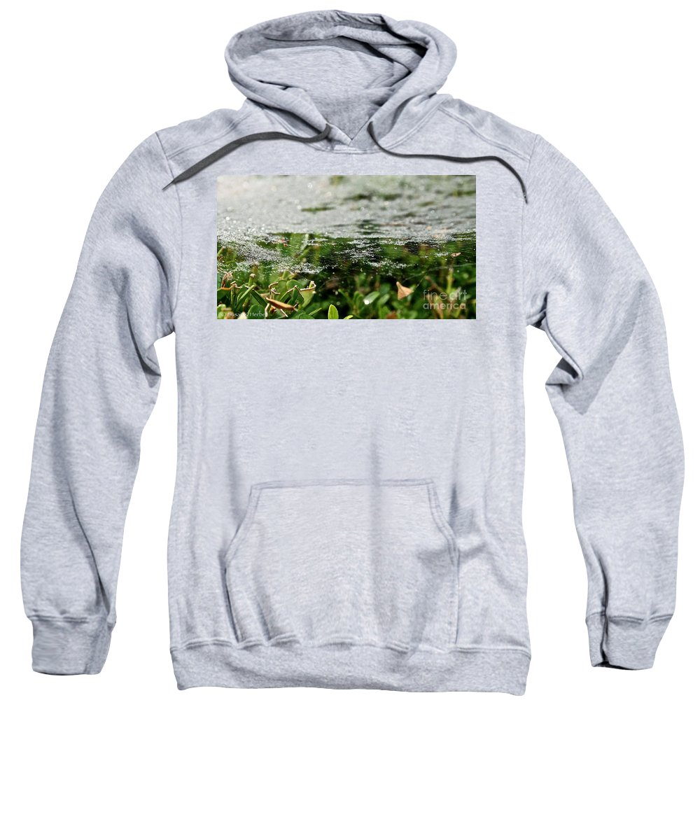 Outdoors Sweatshirt featuring the photograph Level by Susan Herber