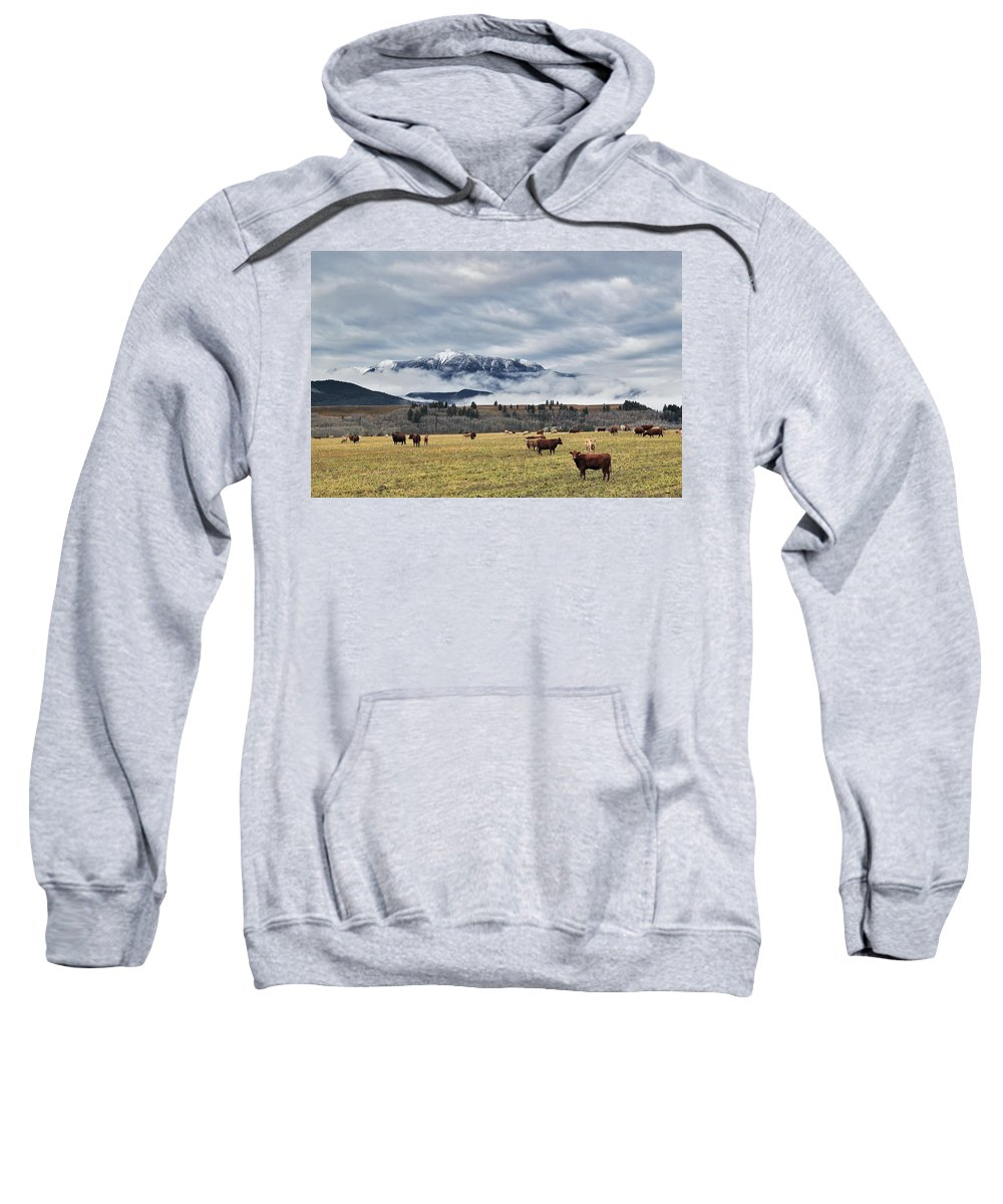 Light Sweatshirt featuring the photograph Livingstone Range And Pastureland by Darwin Wiggett