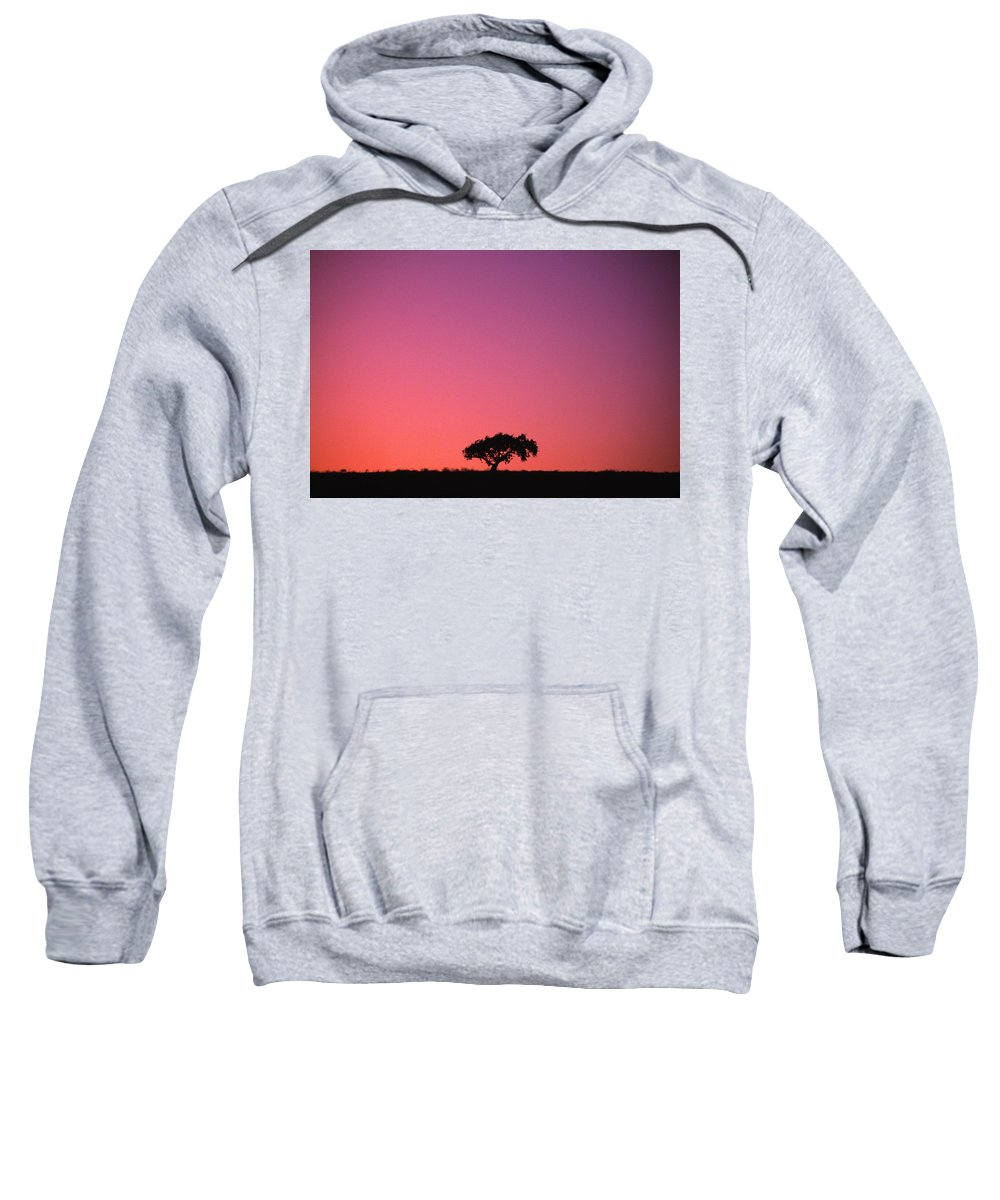 Color Image Sweatshirt featuring the photograph Lone Tree Backlit By Afterglow by Natural Selection Chris Pinchbeck
