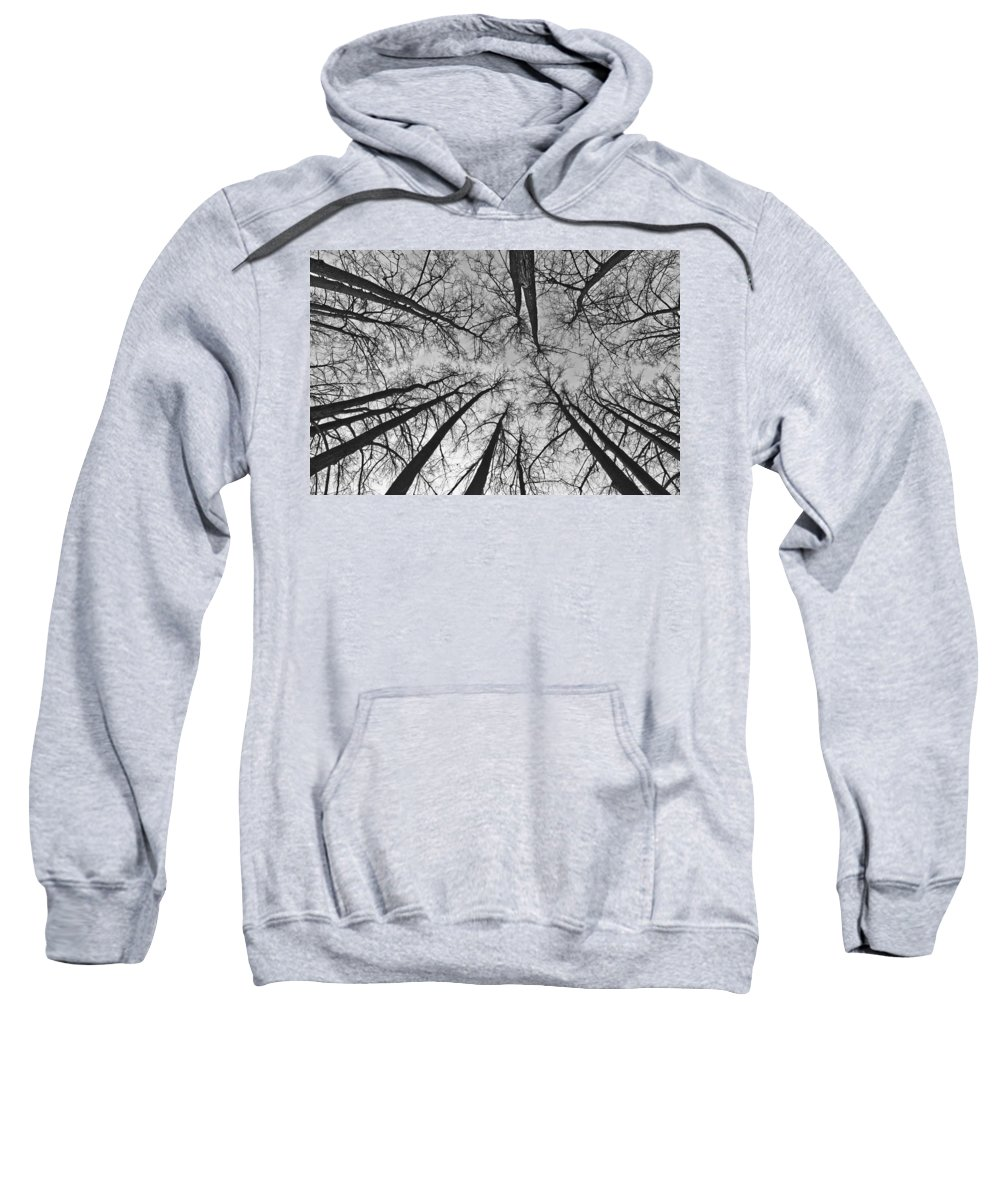 Landscape Sweatshirt featuring the photograph Look Up by Michael Goyberg