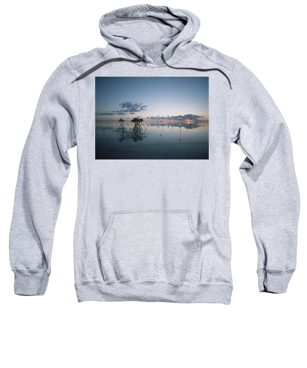 Water Sweatshirt featuring the photograph Looking Out To Sea Past Mangrove Shoots by Axiom Photographic