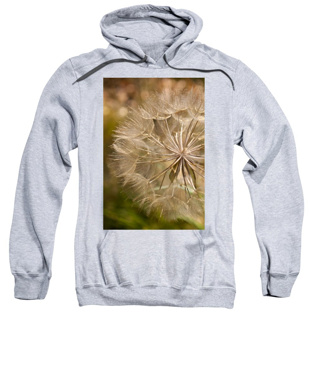 Flower Sweatshirt featuring the photograph Lots Of Wishes by Lauri Novak