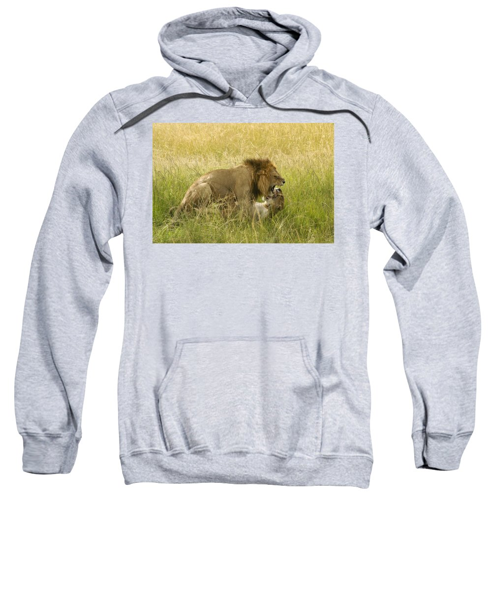 Africa Sweatshirt featuring the photograph Love In The Wild by Michele Burgess