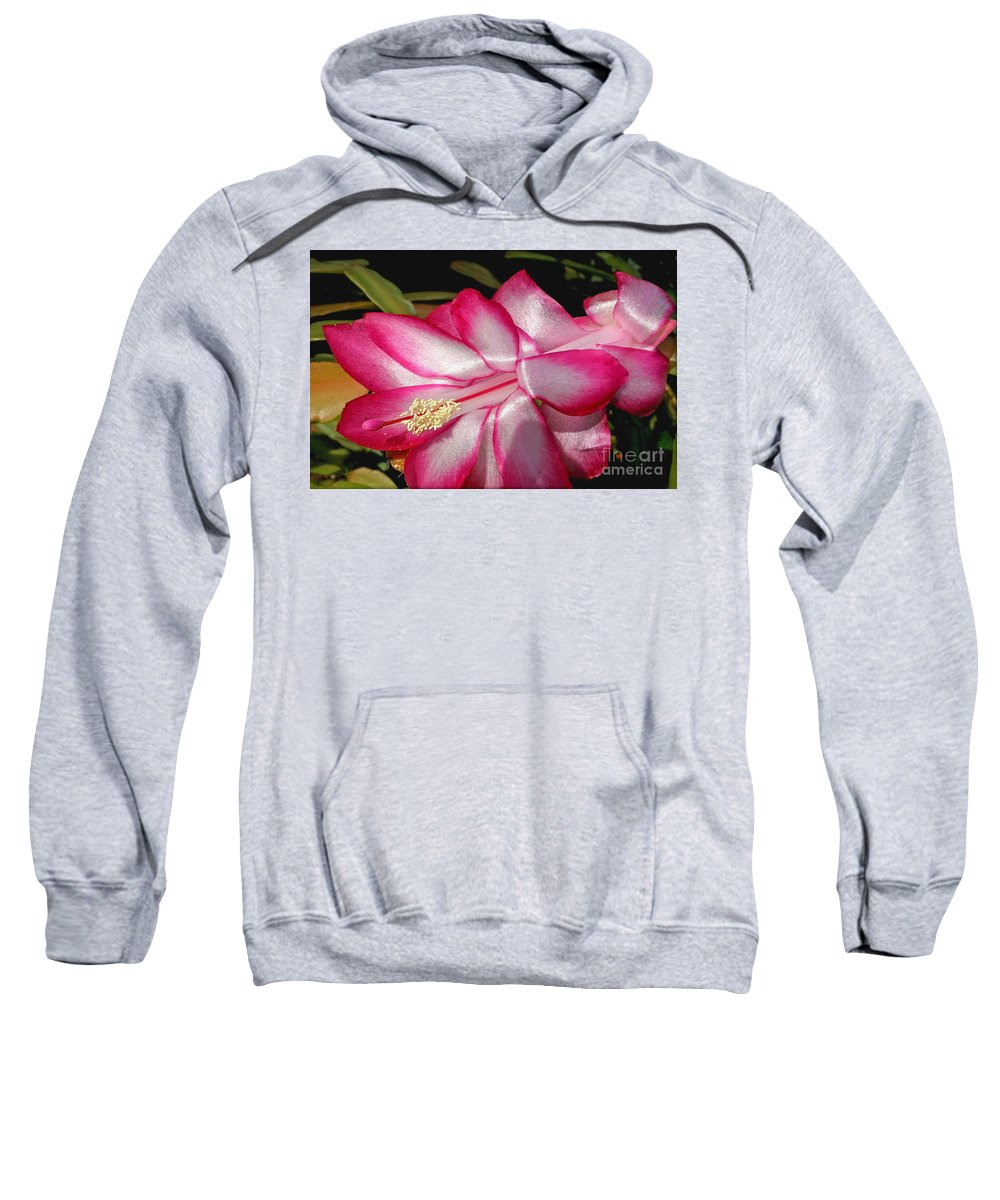 Photography Sweatshirt featuring the photograph Luminous Cactus Flower by Kaye Menner
