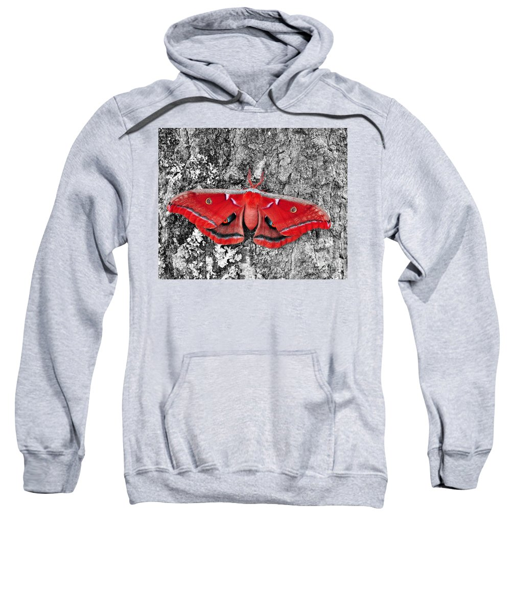 Moth Sweatshirt featuring the photograph Madam Moth - Red White And Black by Al Powell Photography USA