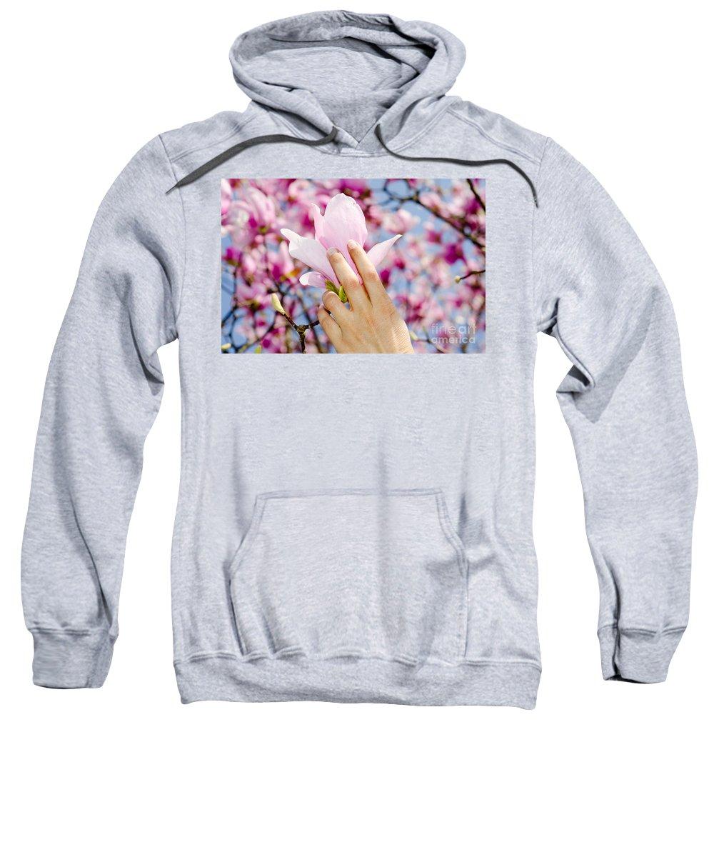 Hands Sweatshirt featuring the photograph Magnolia Flower by Mats Silvan