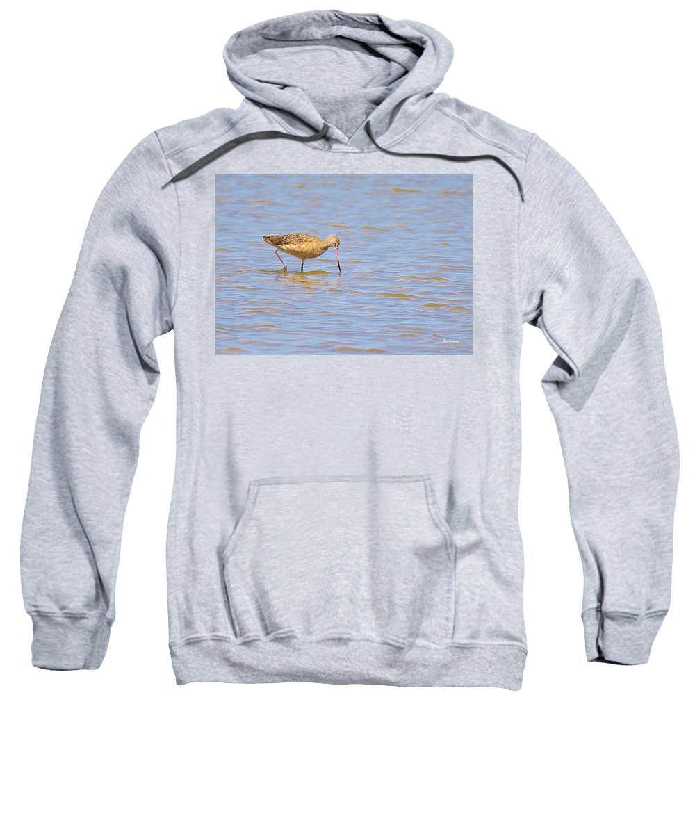 Roena King Sweatshirt featuring the photograph Marbled Godwit Searching For Food by Roena King