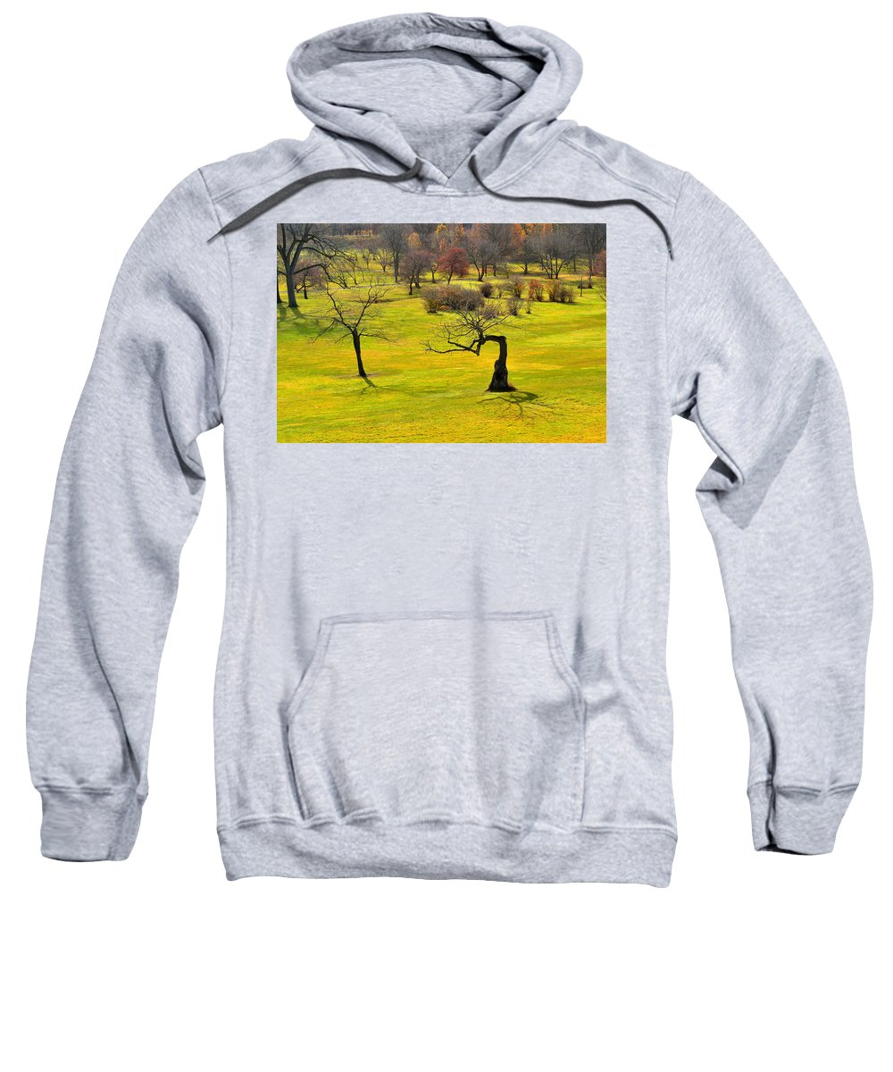 Trees Sweatshirt featuring the photograph Middle Earth by Joshua McCullough