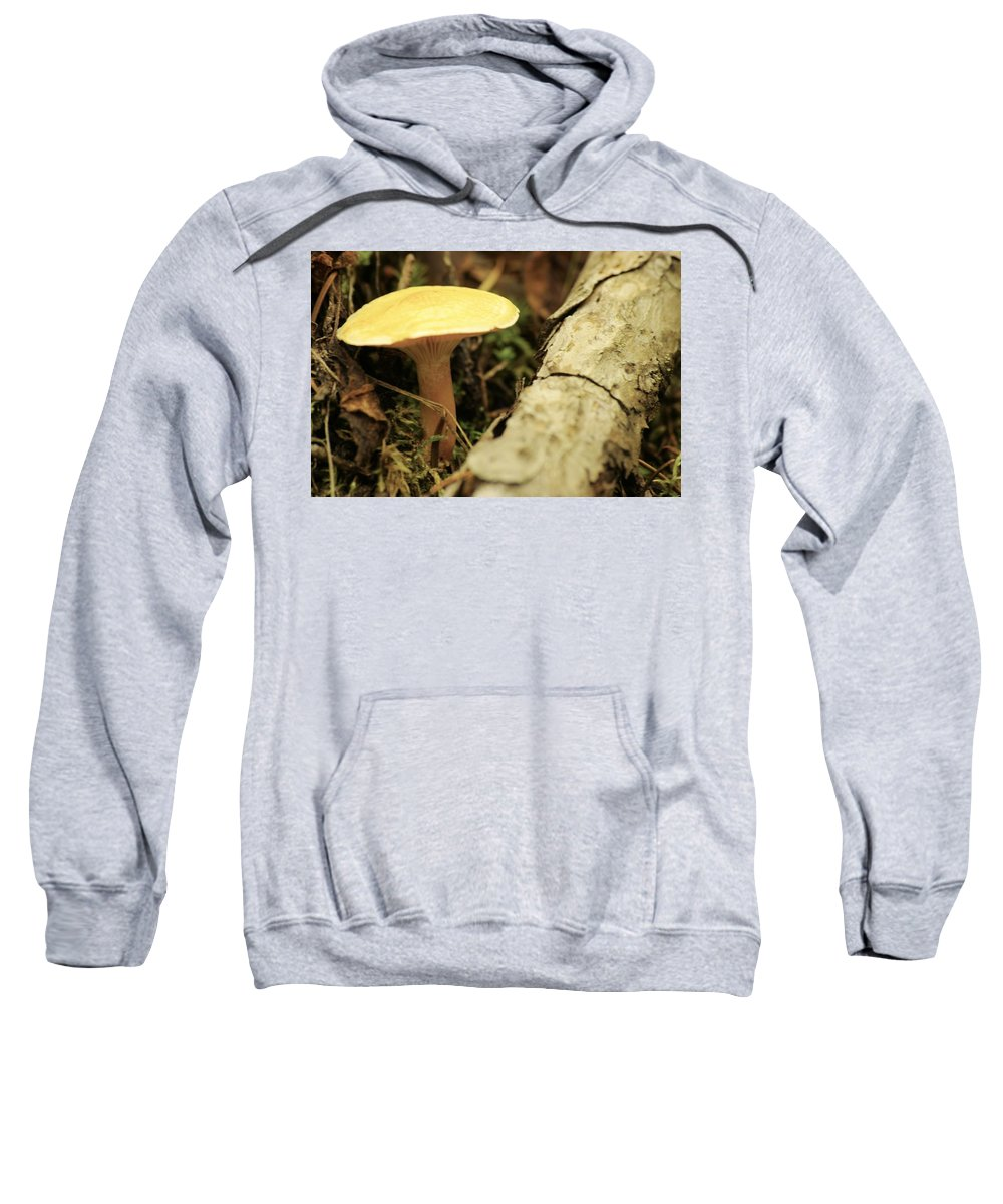 Sweatshirt featuring the photograph Midway Mountain Morsel 3 by John Greaves
