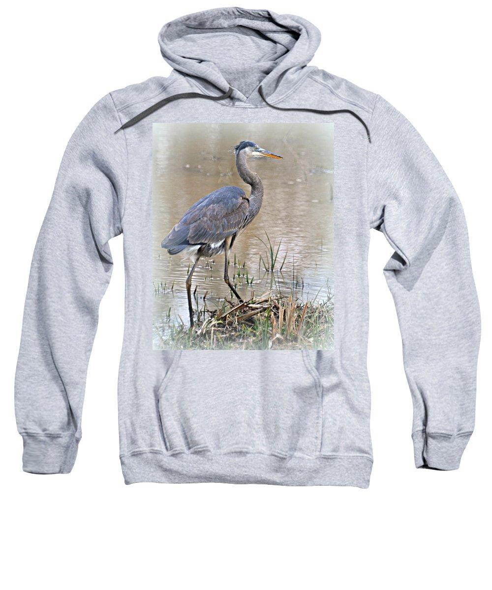 Bird Sweatshirt featuring the photograph Mingo Great Blue by Marty Koch