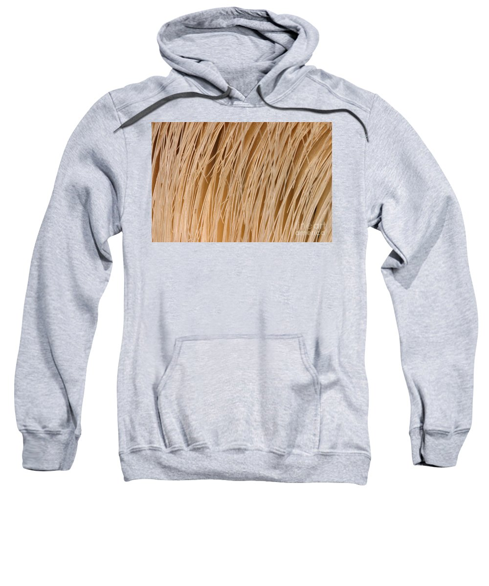 Fauna Sweatshirt featuring the photograph Minke Whale Baleen by Ted Kinsman