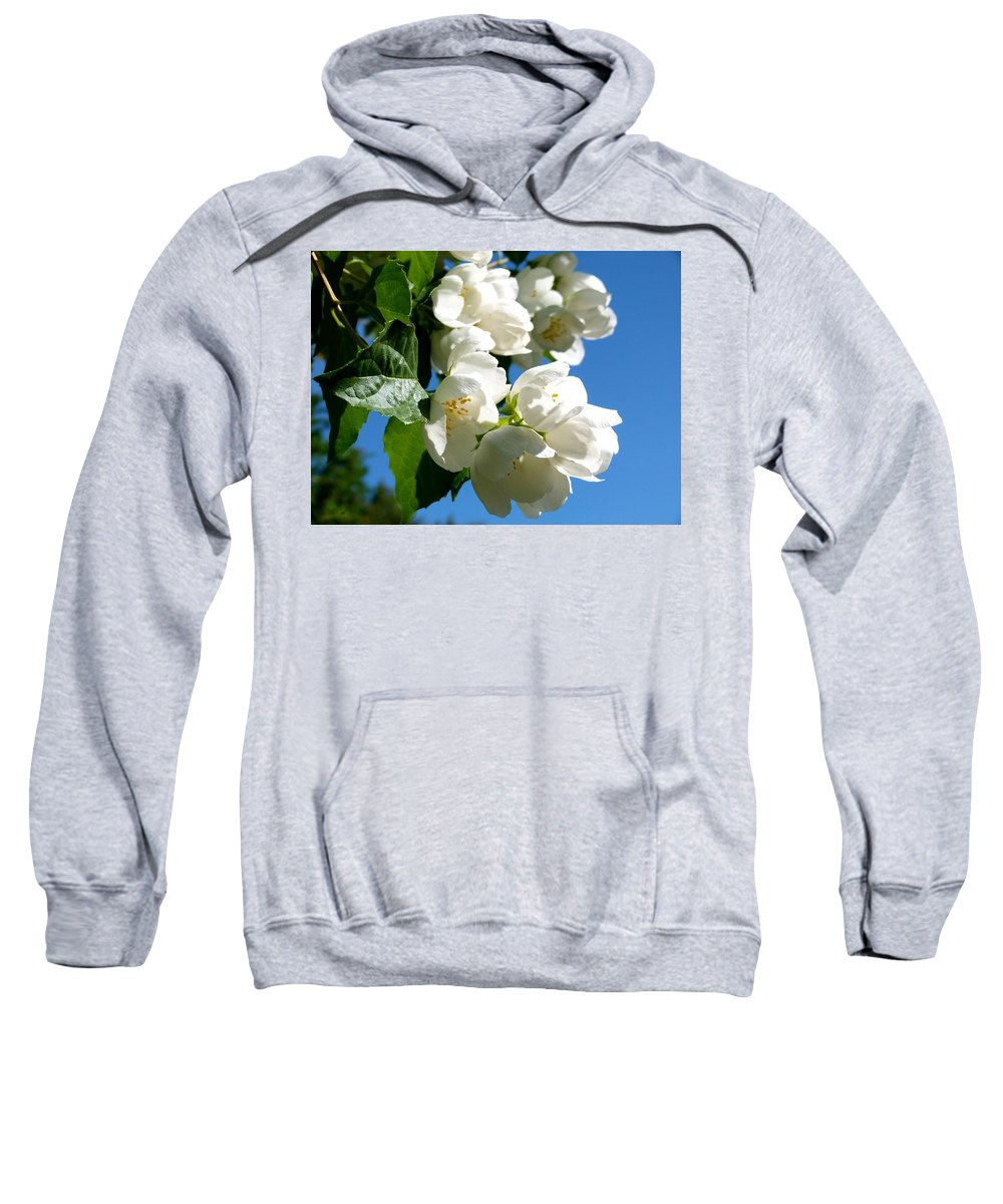 Mock Orange Sweatshirt featuring the photograph Mock Orange 4 by Will Borden