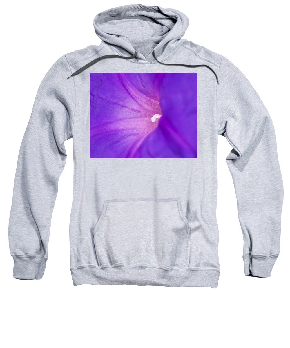 Morning Glory Sweatshirt featuring the photograph Morning Glory by Roger Wedegis