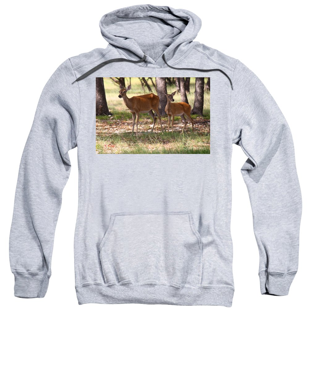 Roena King Sweatshirt featuring the photograph Mother And Yearling Deer by Roena King