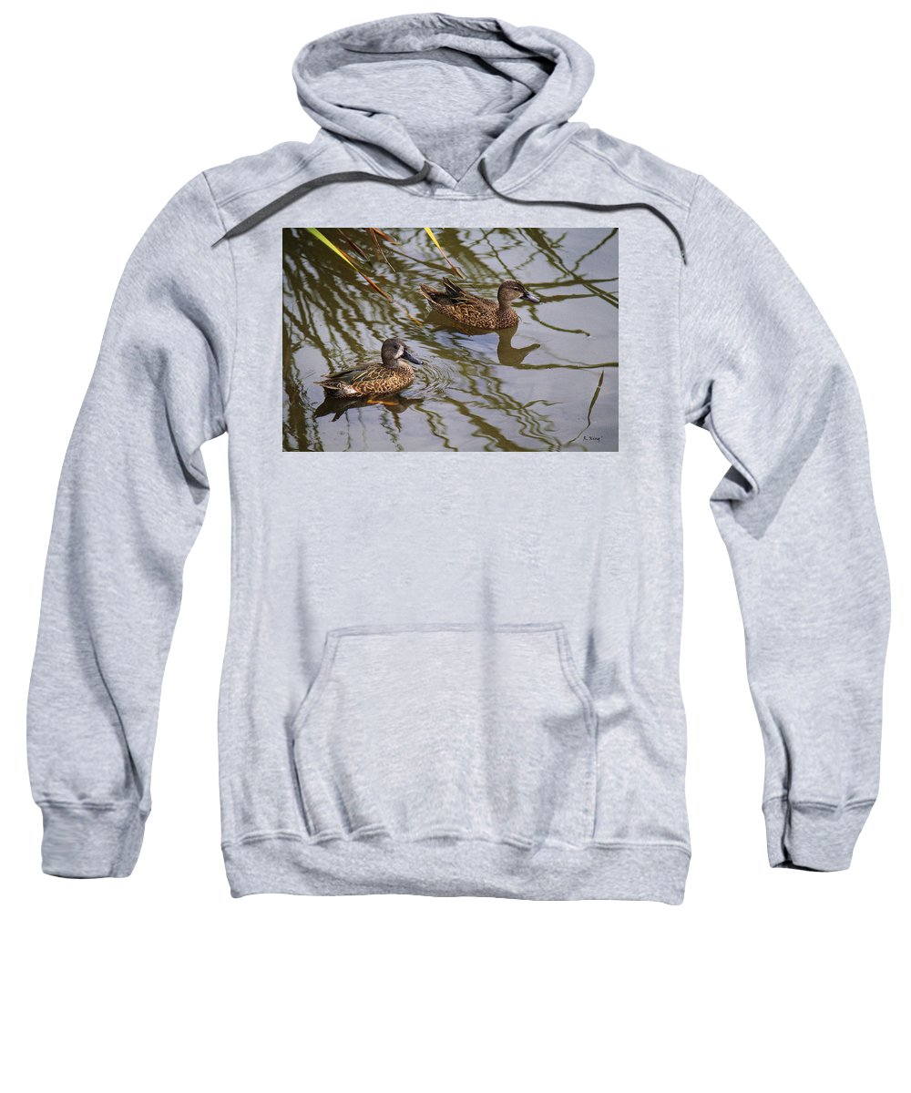 Roena King Sweatshirt featuring the photograph Mr And Mrs Blue Wing Teal by Roena King