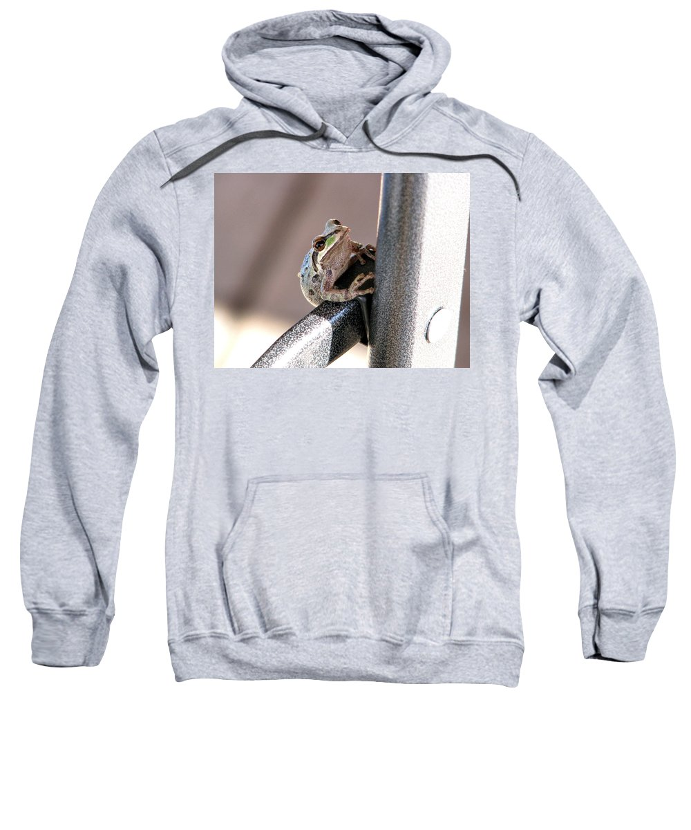 Frog Sweatshirt featuring the photograph My New Friend by Rory Sagner