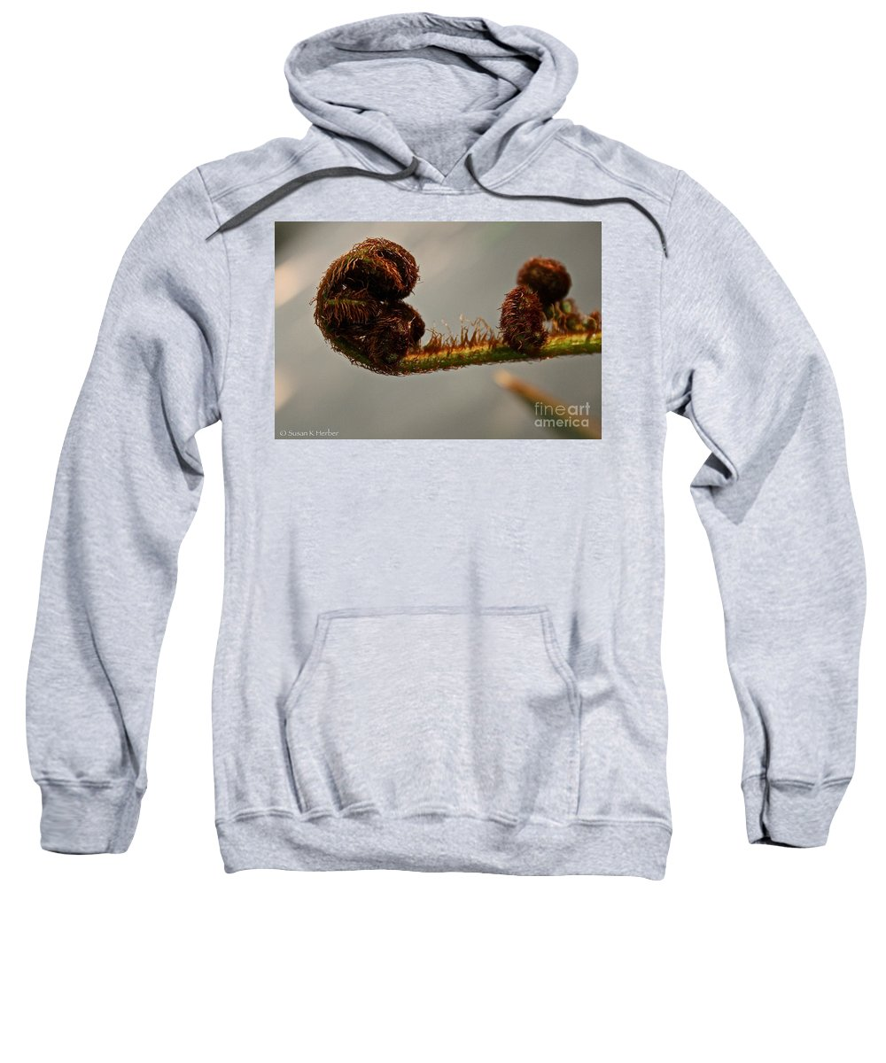 Plant Sweatshirt featuring the photograph Nature's Red Carpet Unfurling by Susan Herber