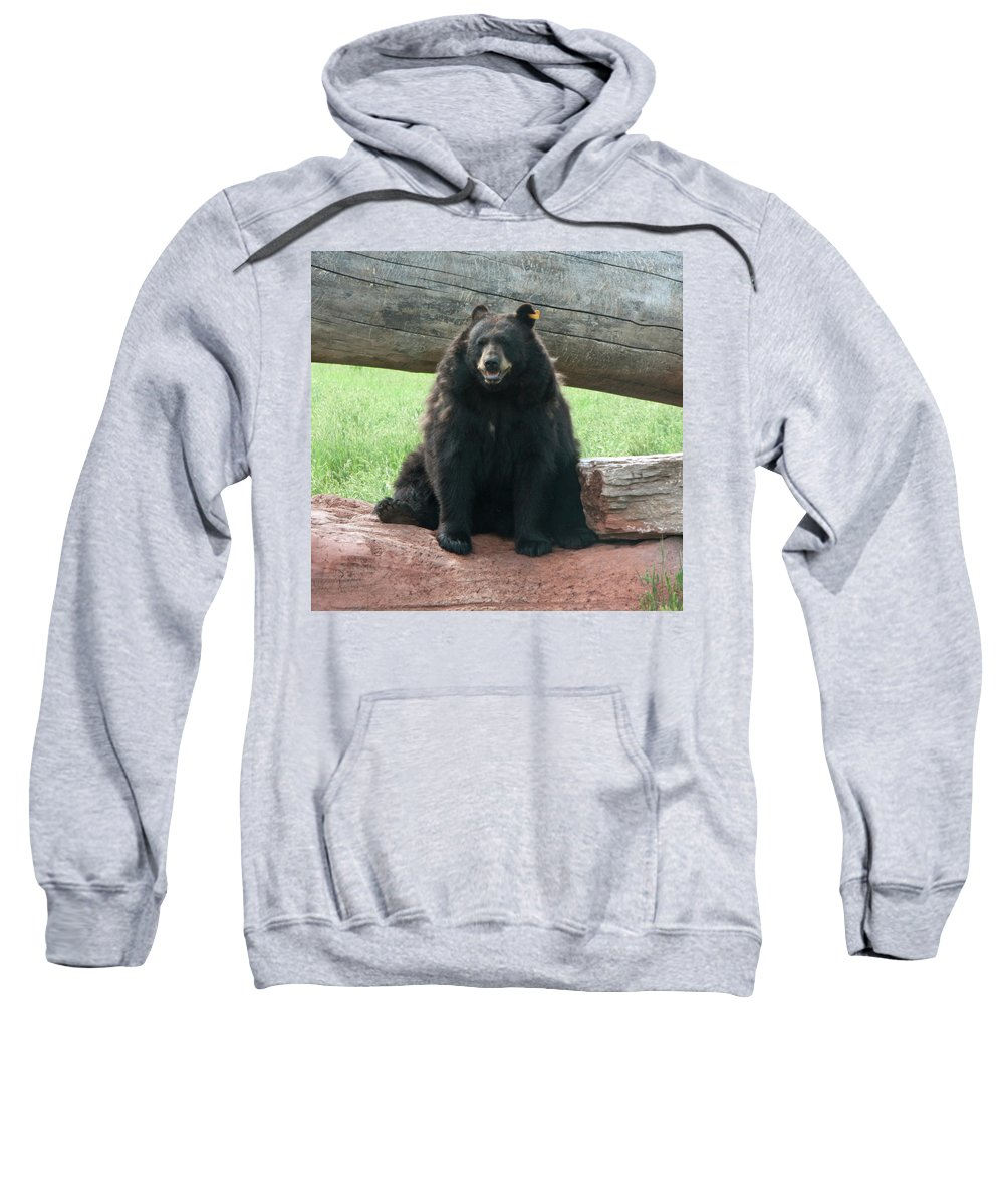 Animal Sweatshirt featuring the photograph Nice To See You by Greg Plamp