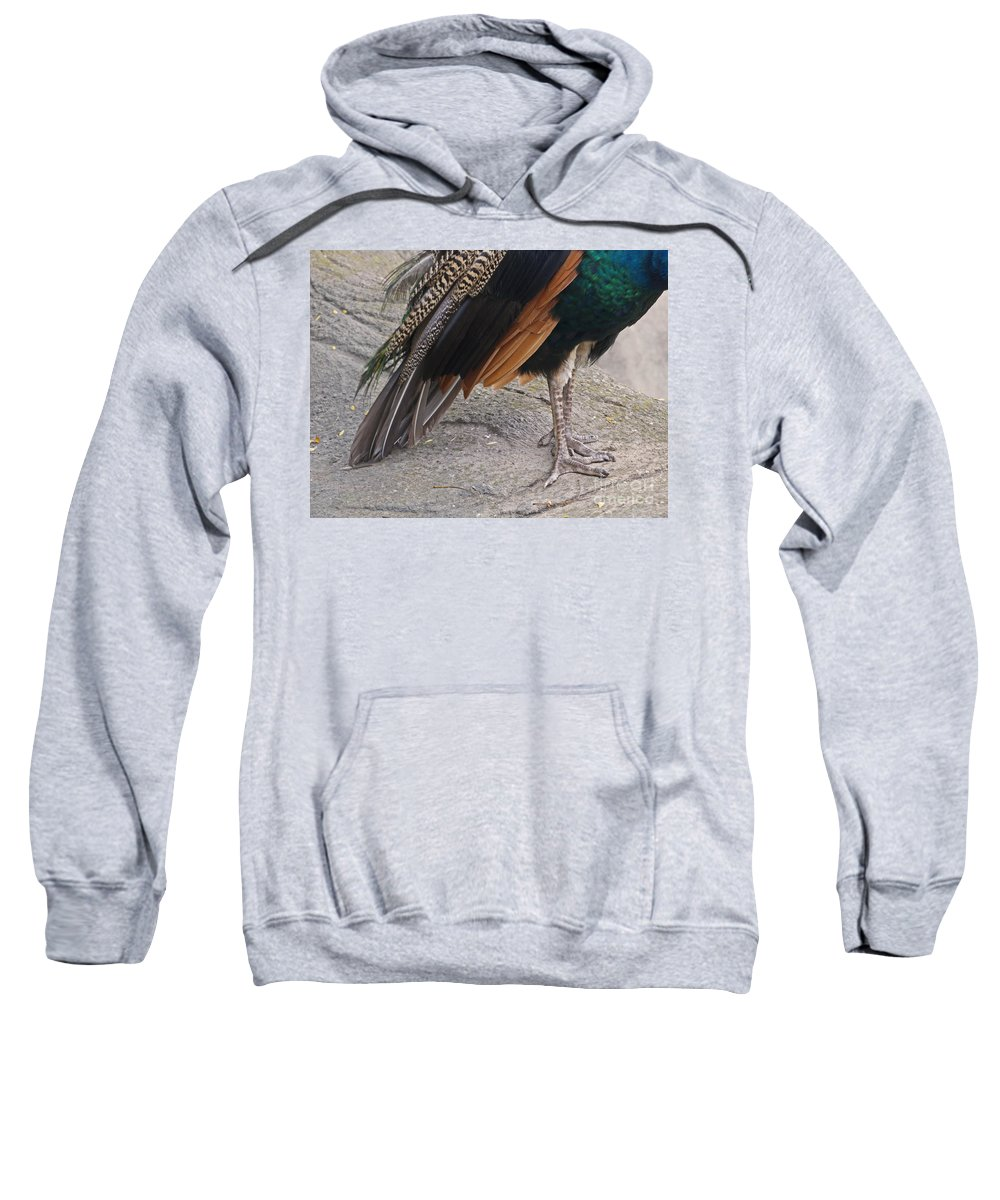 Peahen Sweatshirt featuring the photograph Her Kind Of Beauty by Ann Horn