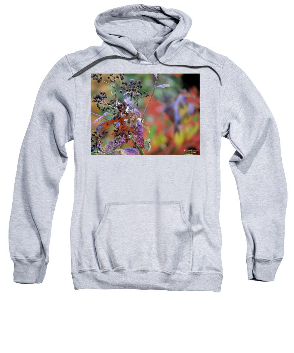 Ny Sweatshirt featuring the digital art Ny Fall 2 by Ericamaxine Price