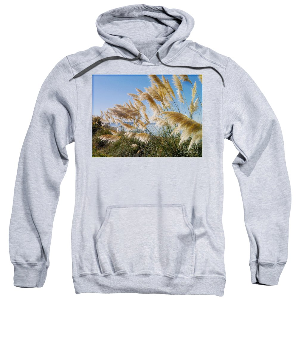 Pampas Grass Sweatshirt featuring the photograph Of Sun And Sky And Wind by Rory Sagner
