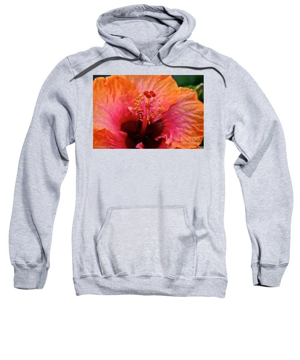 Floral Sweatshirt featuring the photograph Orange Sherbert Hibiscus by Susan Herber