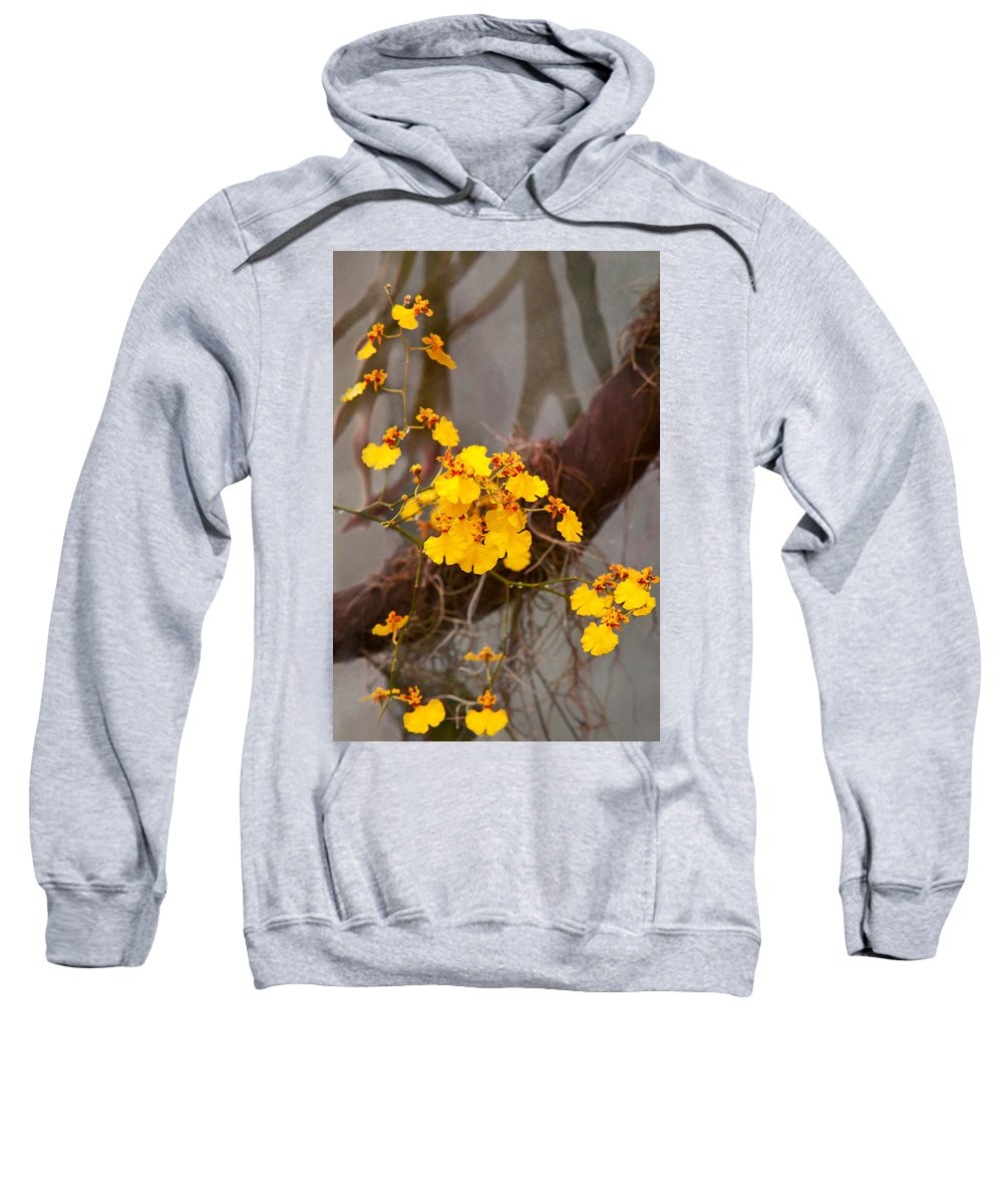 Orchid Sweatshirt featuring the photograph Orchid - Golden Morning by Mike Savad