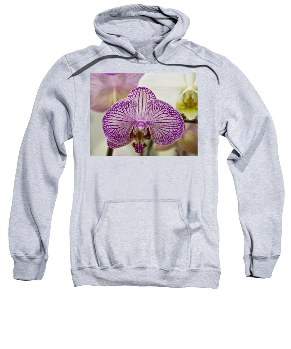 Exotic Sweatshirt featuring the photograph Orchid Originality by Angelina Vick