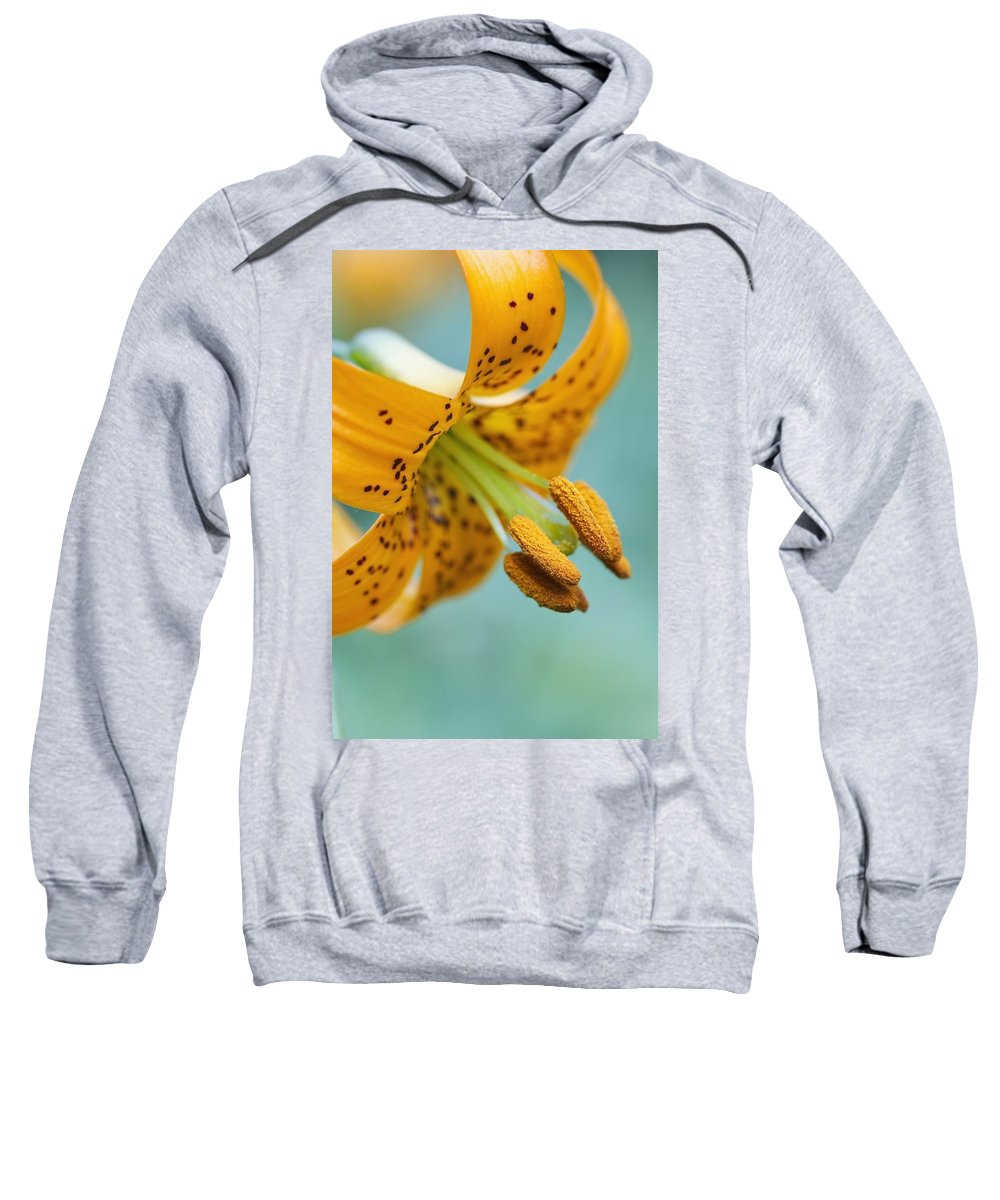 Lilium Sweatshirt featuring the photograph Oregon, United States Of America A Lily by Craig Tuttle