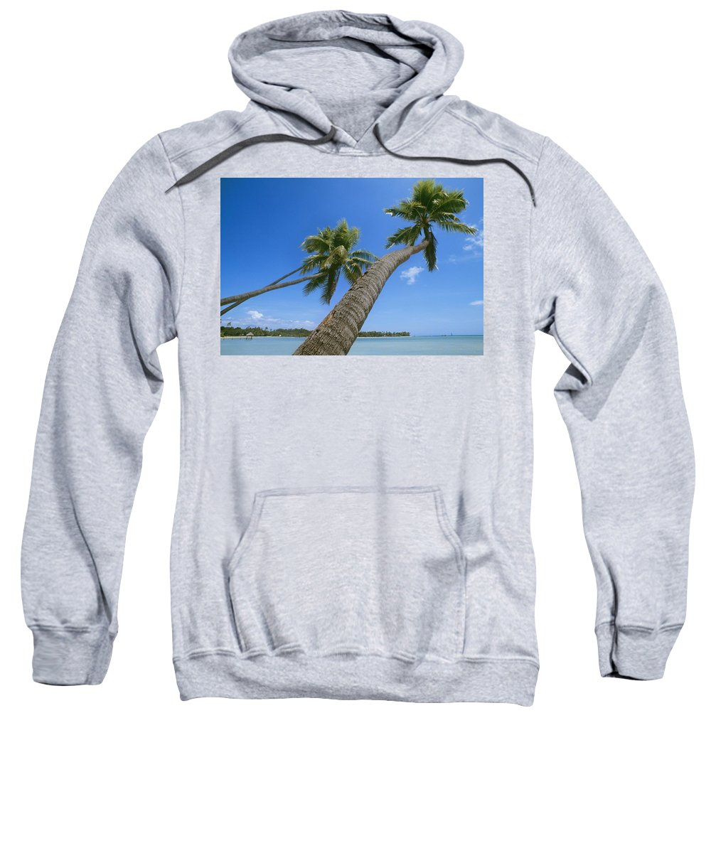 Water Sweatshirt featuring the photograph Palm Trees On A Tropical Beach, Fiji by Axiom Photographic