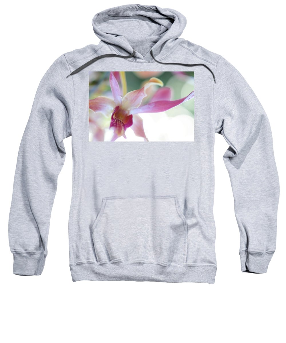 Flowers Sweatshirt featuring the photograph Passion For Flowers. Sensualite by Jenny Rainbow