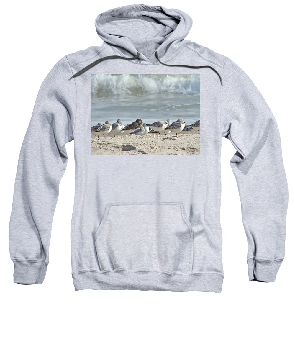 Birds Sweatshirt featuring the photograph Peeps At The Beach #2 by Mother Nature