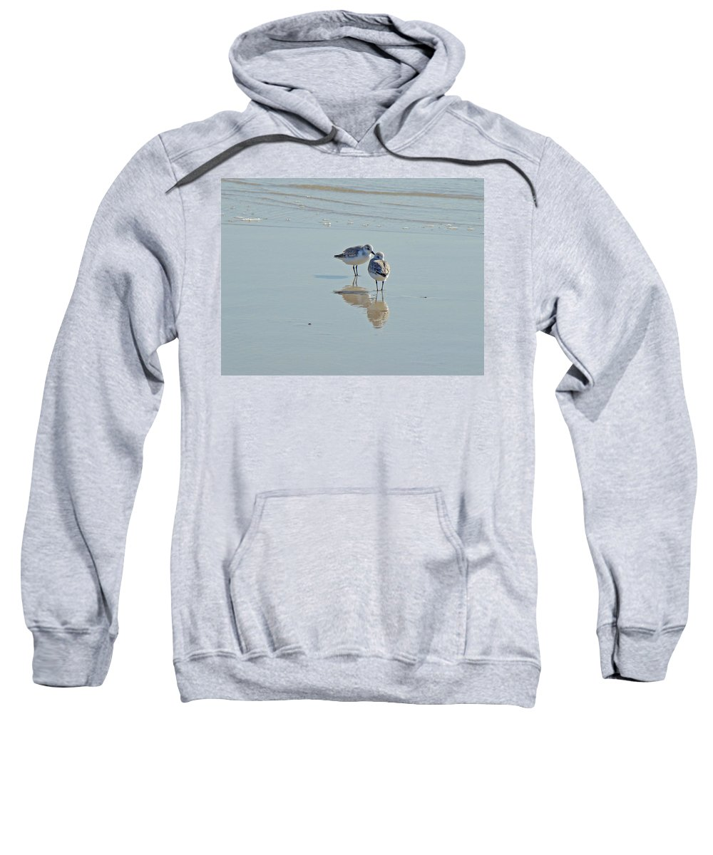 Birds Sweatshirt featuring the photograph Peeps At The Beach #3 by Mother Nature