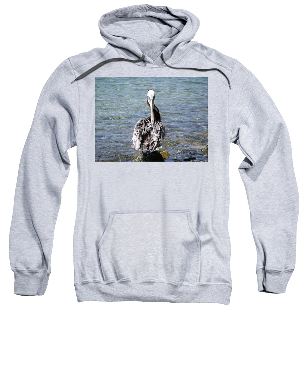 Saint Sweatshirt featuring the photograph Pelican Grooming by Salvadore Delvisco