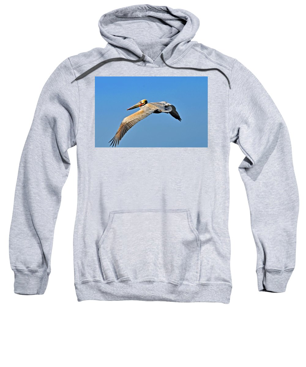 Pelican Sweatshirt featuring the photograph Pelican In Flight by Lynn Bauer