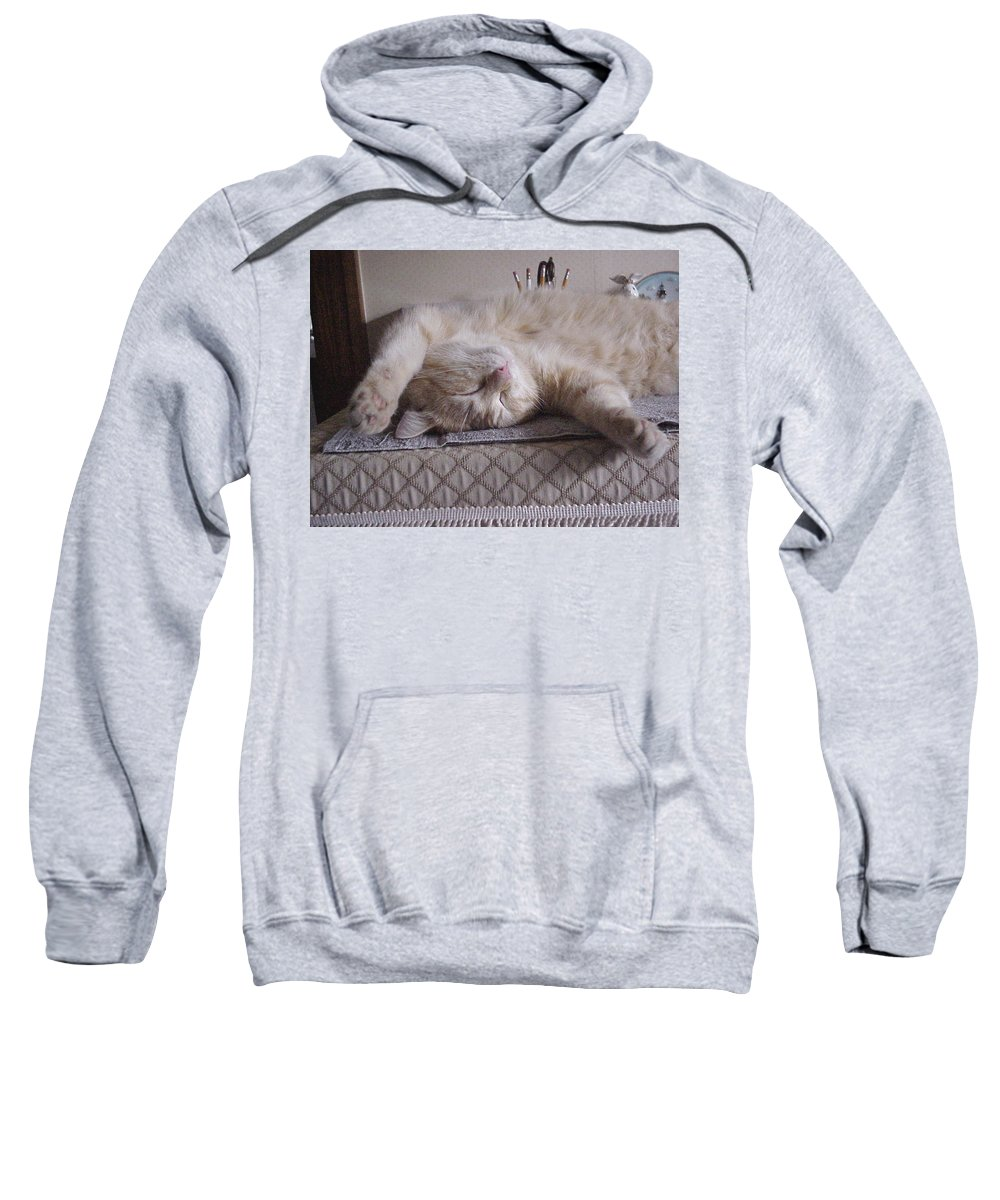 Cats Sweatshirt featuring the photograph Percy Cat Sleep Stylist by John Bowers