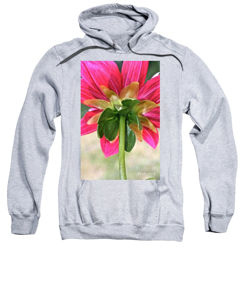 Outdoors Sweatshirt featuring the photograph Petal Support by Susan Herber