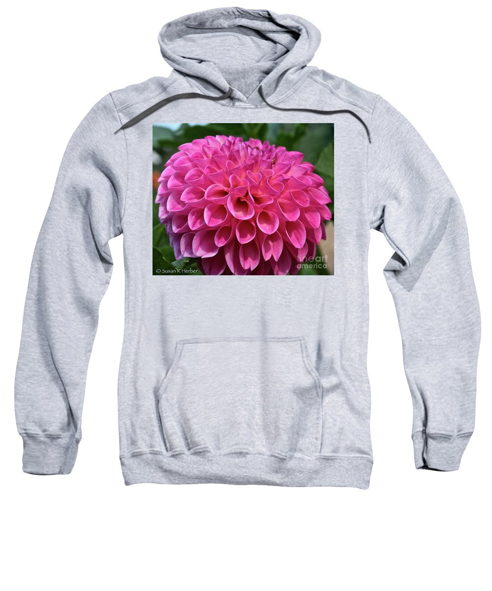 Outdoors Sweatshirt featuring the photograph Pink Hearts by Susan Herber