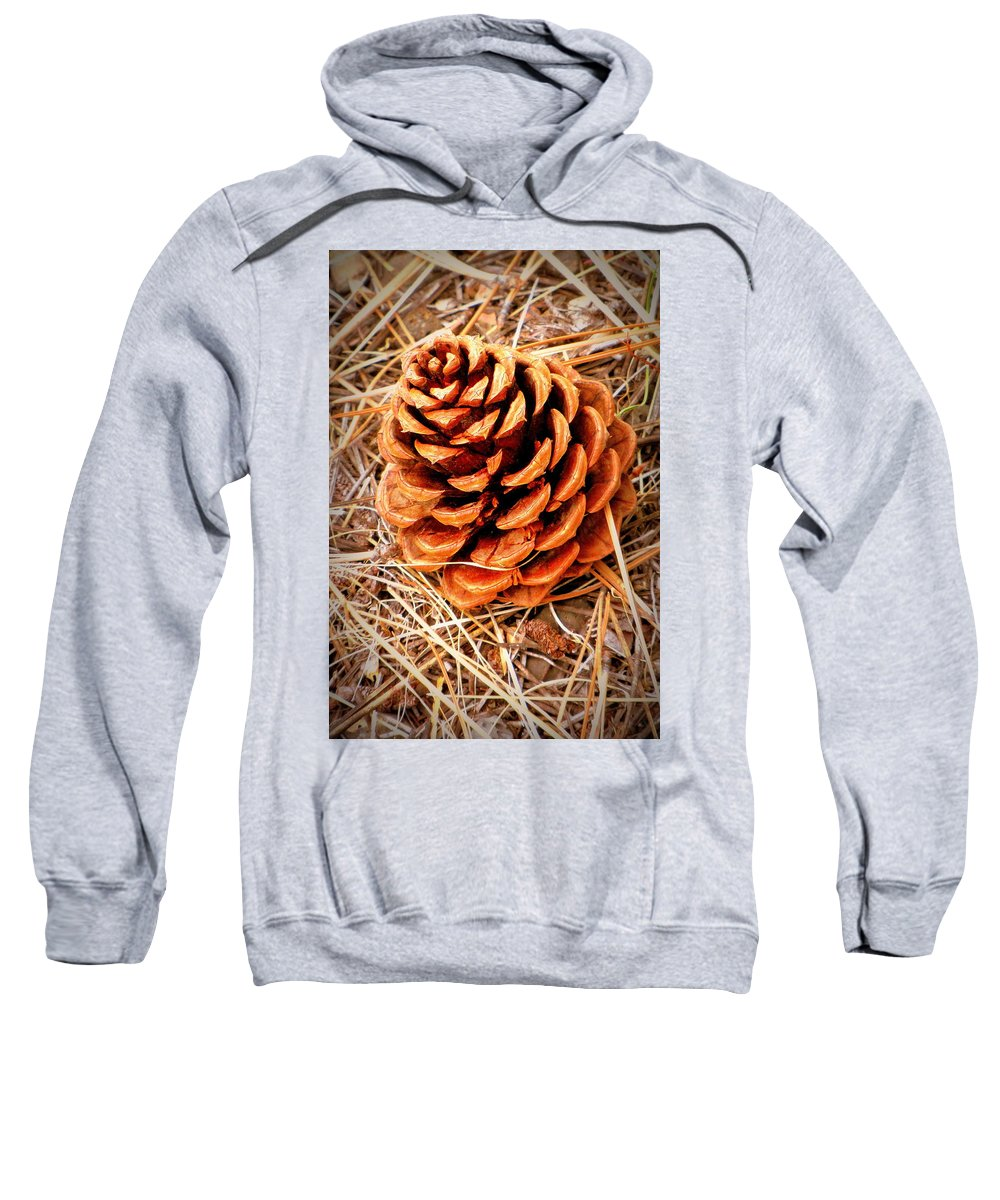 Forest Sweatshirt featuring the photograph Portrait Of A Pinecone by Judy Garrett